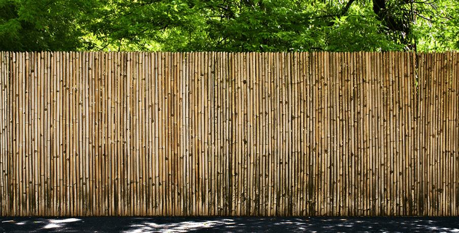 Bamboe schutting onderhouden